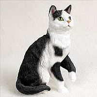 Shorthaired Blk Wht Tabby